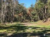 14 Jesmond Road Helensvale, QLD 4212