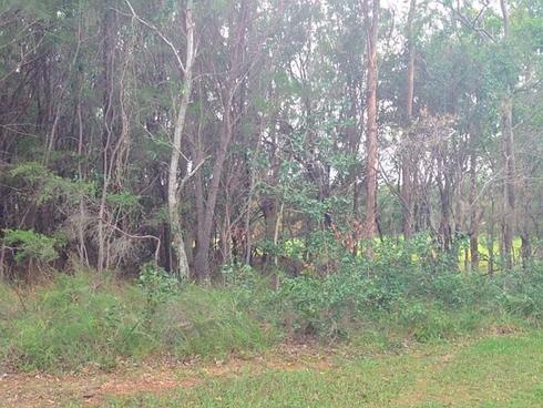 57 Fern Tce Russell Island, QLD 4184