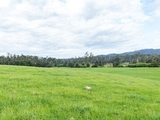 Lot 1 Forester Road North Scottsdale, TAS 7260