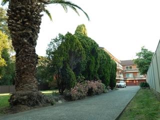 8/66 Second Avenue Campsie , NSW, 2194