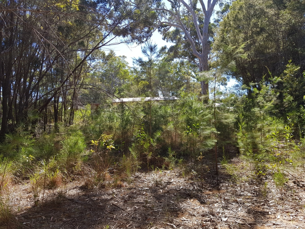 9 Jupiter Russell Isand, QLD 4184
