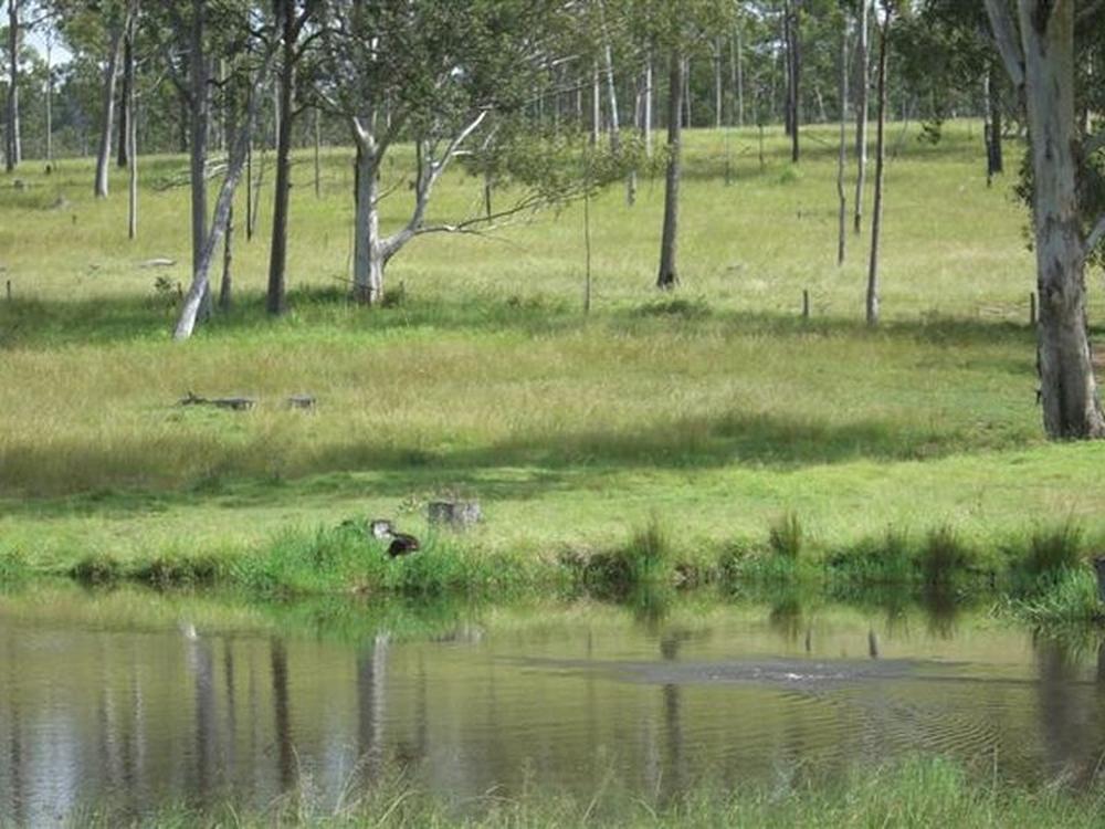 0 Larsens Road Moombra, QLD 4312