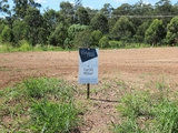 Lot 10/110-142 Brentwood Drive Ebbw Vale, QLD 4304