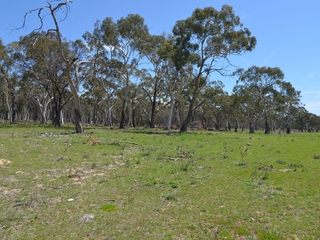 Lot 611/ Pipers Flat Road Pipers Flat , NSW, 2847