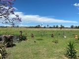 155 Strongs Road Fairy Hill, NSW 2470