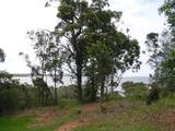 36 Goodsell Crescent Lamb Island, QLD 4184