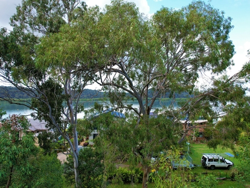 158 Canaipa Point Dve Russell Island, QLD 4184