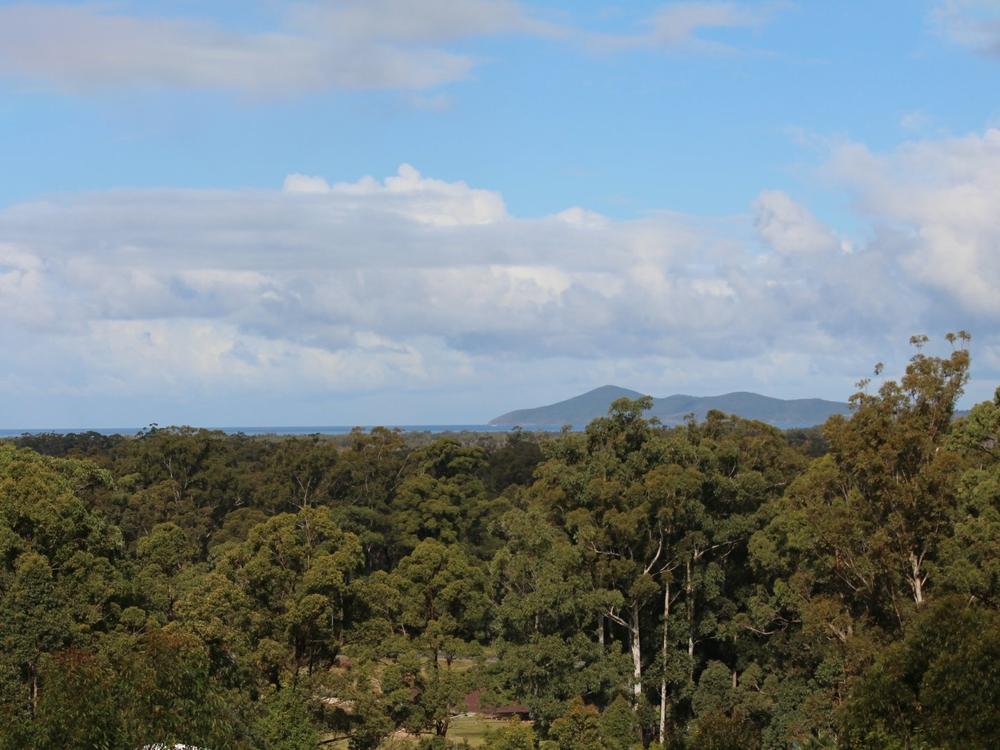 3 The Knoll Tallwoods Village, NSW 2430