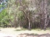 3 Natone Terrace Macleay Island, QLD 4184