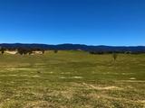 2603 Snowy Mountains Highway Bemboka, NSW 2550