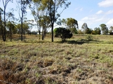 124 Alpha Bypass Road Clermont, QLD 4721