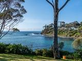 22 Baringa Crescent Lilli Pilli, NSW 2536