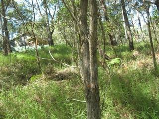 18 Lawson Russell Island , QLD, 4184